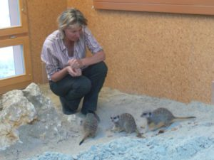Marta with the 3 males, just after their arrival
